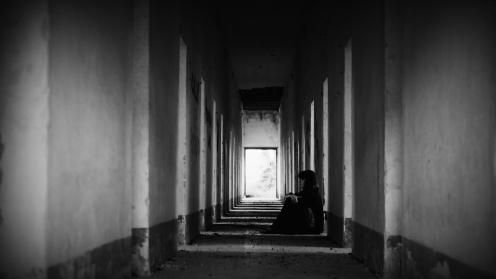 Cyclamen // Davide Canali // Italy